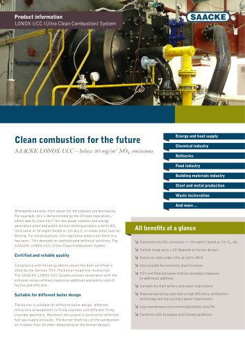 Clean combustion for the future
