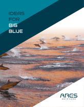 IDEAS FOR BIG BLUE
