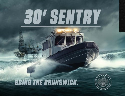 30' Sentry