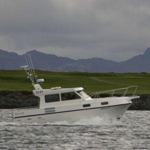 lancha Express Cruiser com motor de centro / a diesel / de pesca esportiva / sob medida