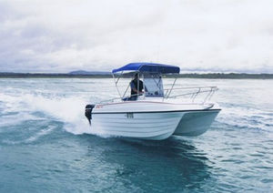 lancha de console central catamarã / com motor de popa / bimotor