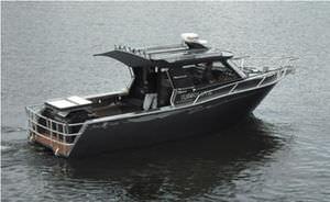 lancha Cabin Cruiser com motor de centro / com hard-top / de pesca esportiva