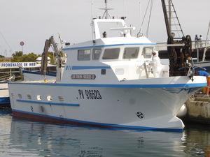 barco profissional barco de pesca polivalente / com motor de centro