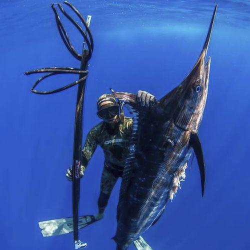 arbalete de pesca submarina em alumínio