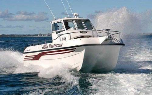 barco de pesca-cruzeiro catamarã / com motor de popa / bimotor / com casco planante