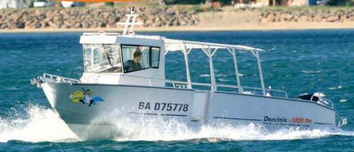 barco profissional barco de passeio / com motor de popa / em alumínio