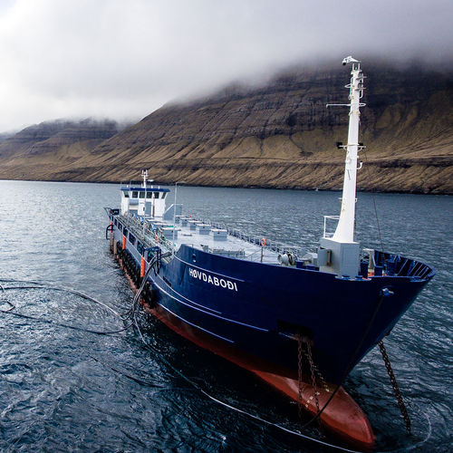navio especial barcaça / de alimentação