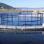 tanque-rede para aquicultura / em plástico / em HDPE / redondo