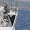 monocasco / de cruzeiro e regata / de popa aberta / 3 cabines