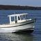 barco de pesca-passeio com motor de centro