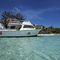 lancha Express Cruiser com motor de centro / bimotor / com flybridge / de mergulho