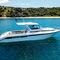 lancha Cabin Cruiser com motor de centro / com motor de popa / bimotor / com hard-top