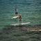 prancha de stand-up paddle de turismo / em madeira / em EPS