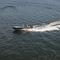 bote com motor de popa / com console central / em alumínio / máx. 5 pessoas