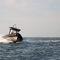 barco inflável com motor de popa / semirrígido / com console central / em alumínio
