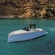 lancha Express Cruiser a diesel / com motor de centro / bimotor / com casco de deslocamento
